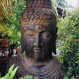 meditation & inner transformation